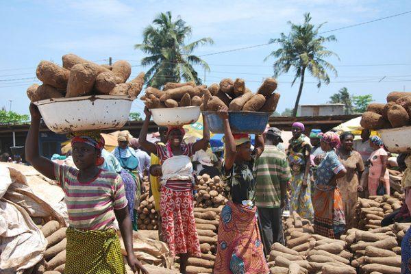 Ghana Yam